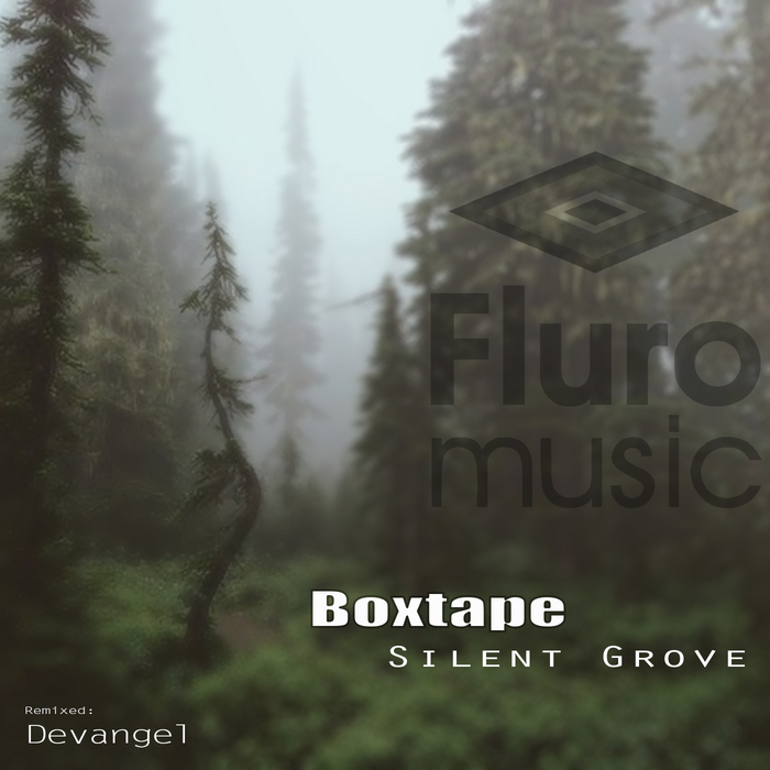 BOXTAPE - Silent Grove