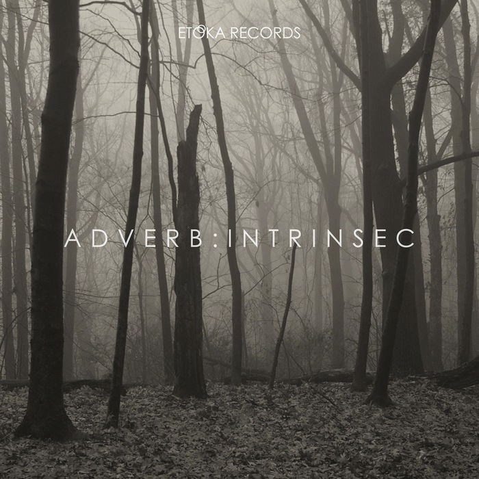 ADVERB - Intrinsec
