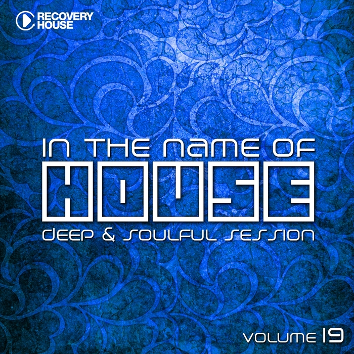 VARIOUS - In The Name Of House Vol 19