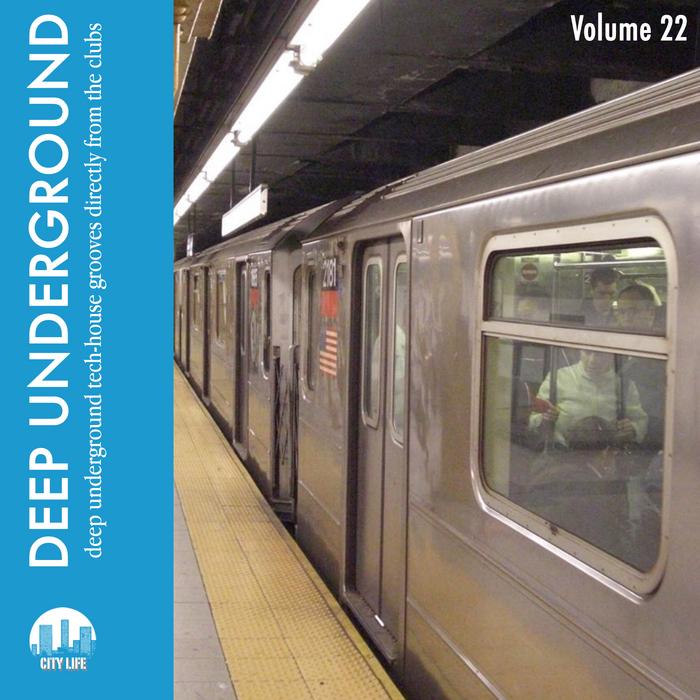 VARIOUS - Deep Underground Vol 22
