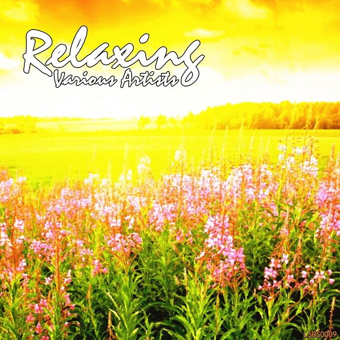 VARIOUS - Relaxing