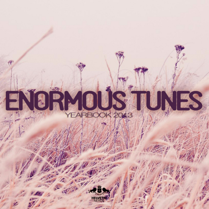 VARIOUS - Enormous Tunes - Yearbook 2013
