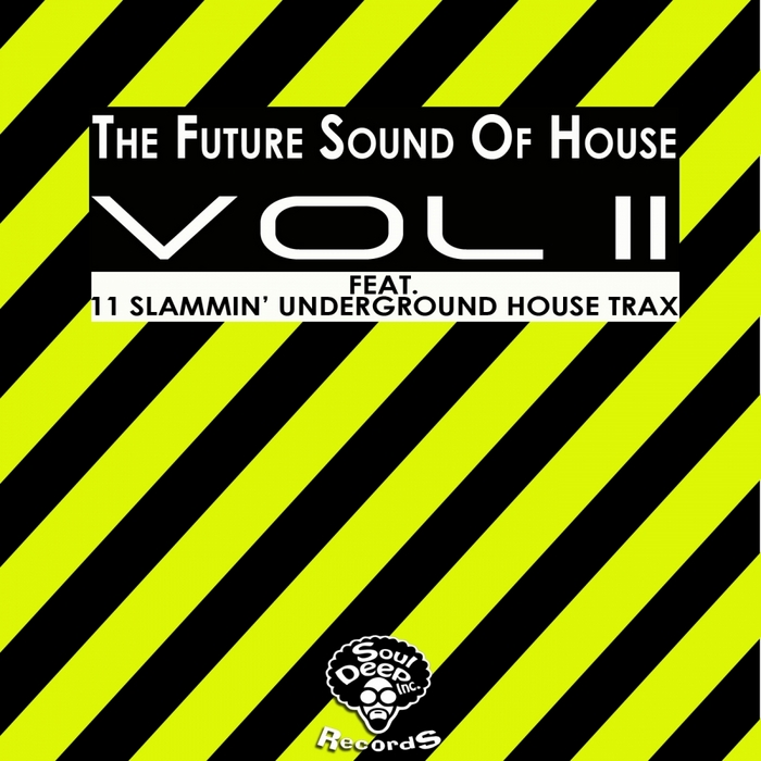 VARIOUS - The Future Sound Of House Vol 2