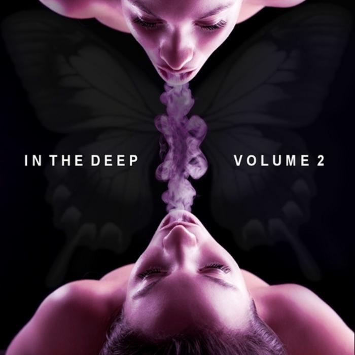 VARIOUS - In The Deep Vol 2