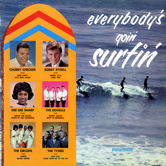 VARIOUS - Everybody's Goin' Surfin'