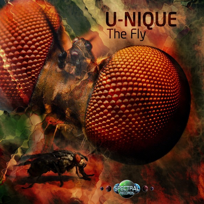 U NIQUE - The Fly
