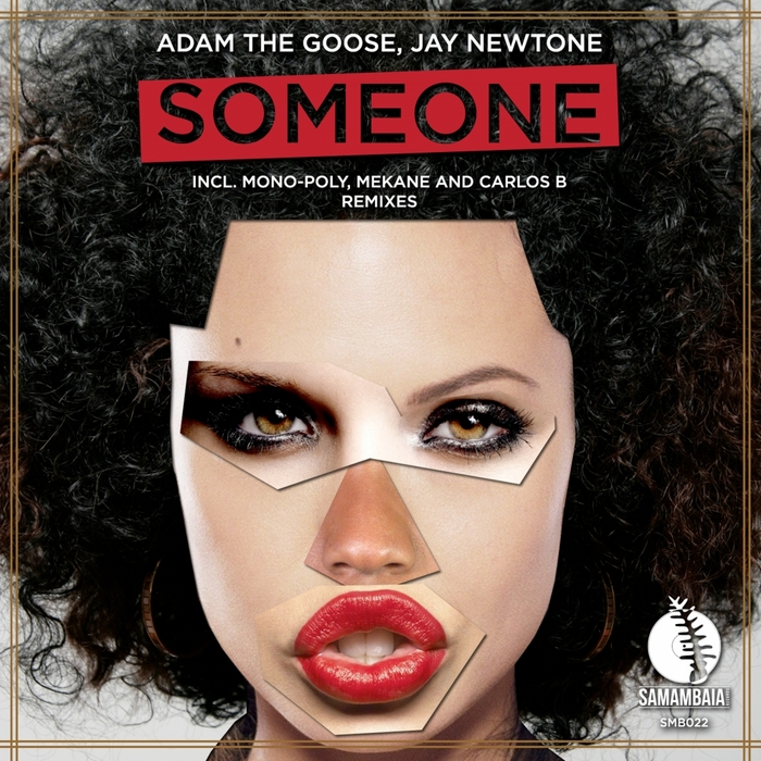 ADAM THE GOOSE/JAY NEWTONE - Someone (remixes)