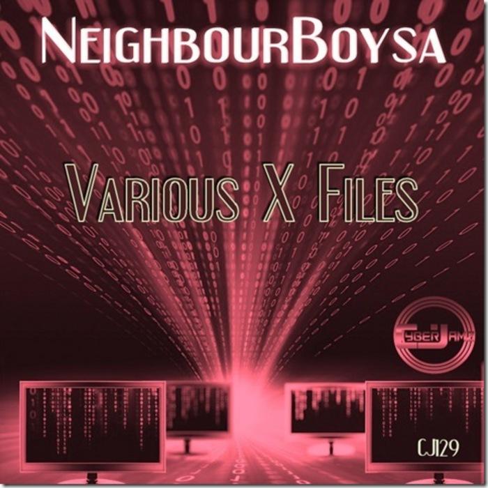 NEIGHBOURBOYSA - Vaerious X-Files EP