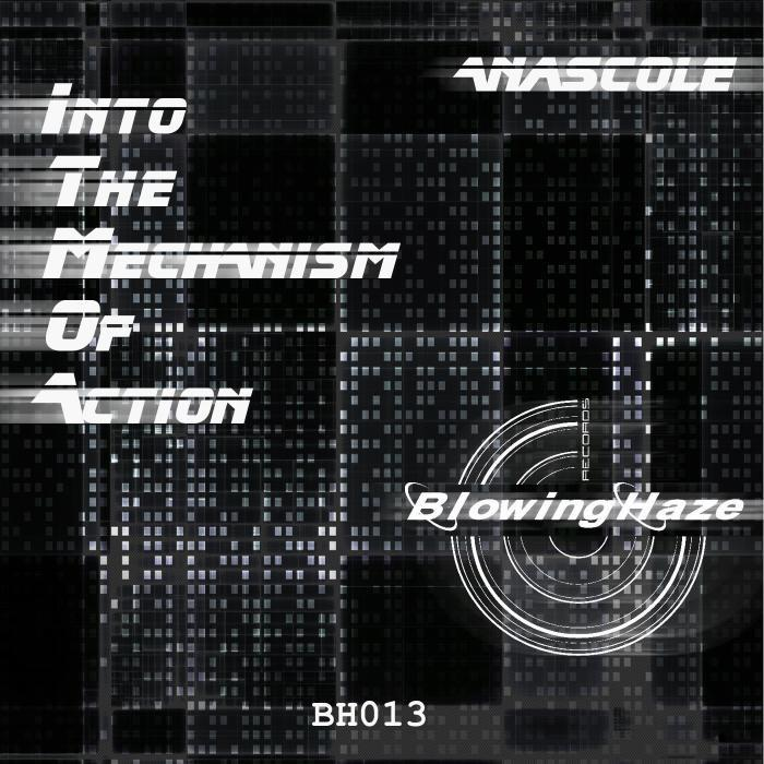 ANASCOLE - Into The Mechanism Of Action