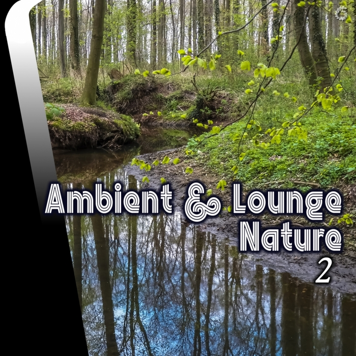 VARIOUS - Ambient & Lounge Nature 2