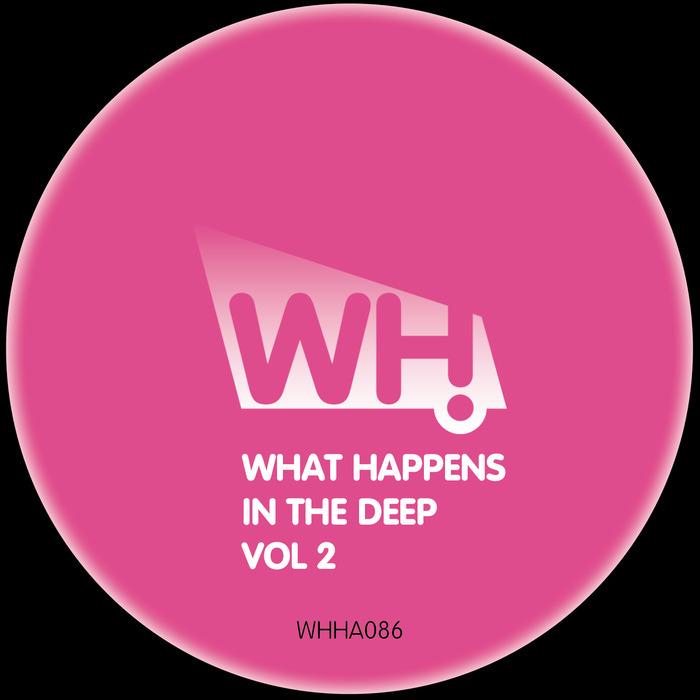 VARIOUS - What Happens In The Deep Vol 2