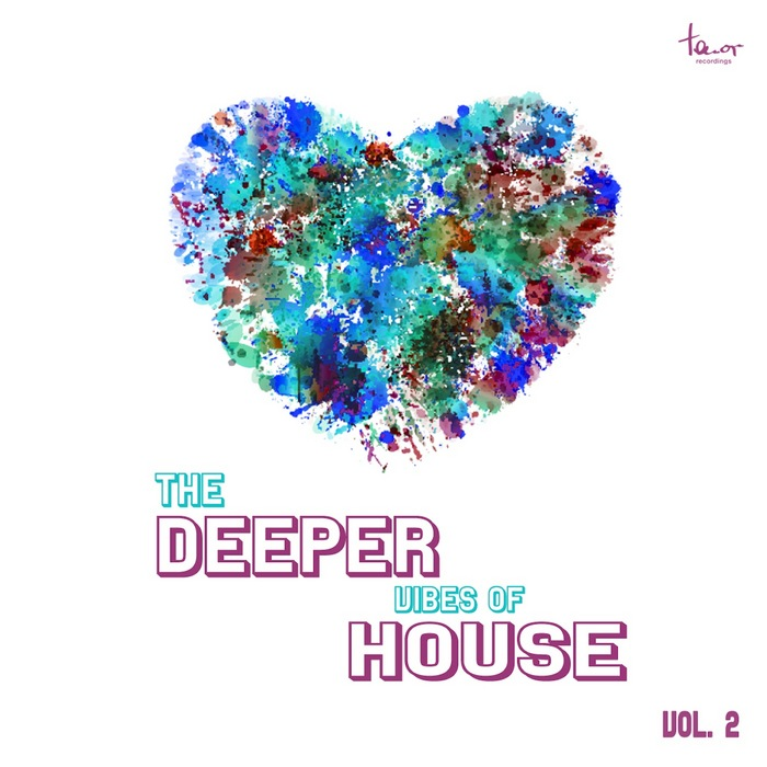 VARIOUS - The Deeper Vibes Of House Vol 2