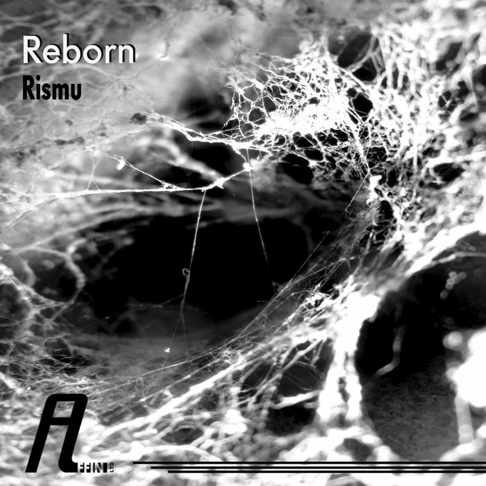 RISMU - Reborn