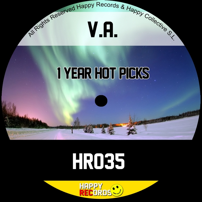 VARIOUS - 1 Year Hot Picks