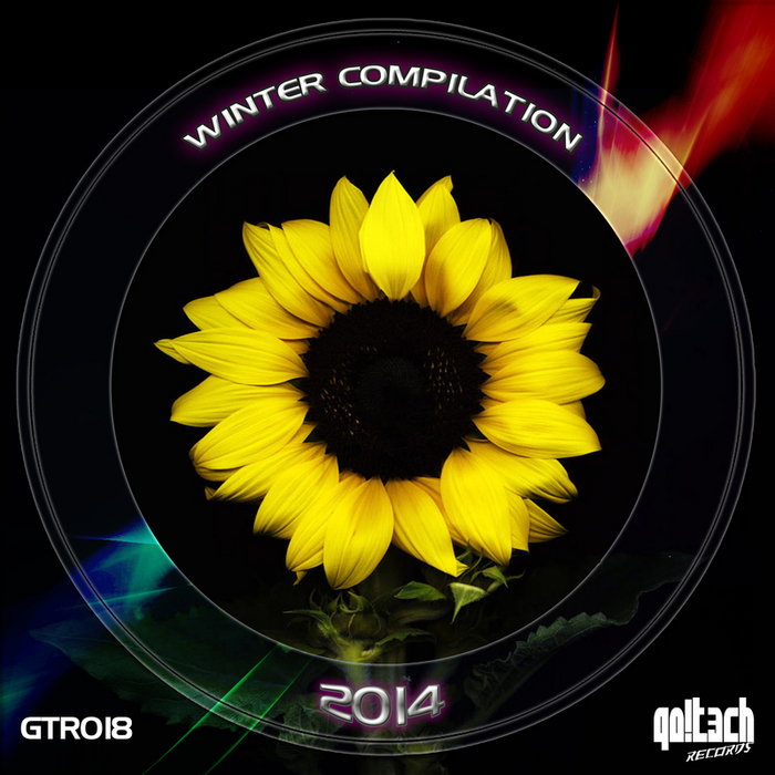 VARIOUS - Winter Compilation