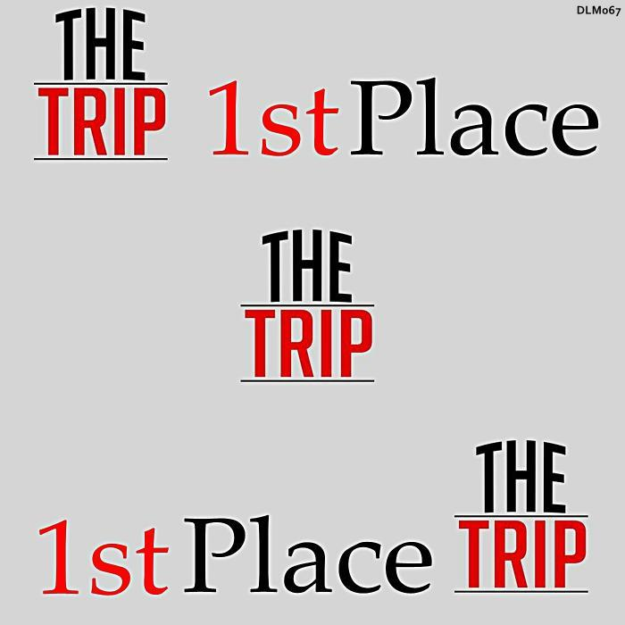 1ST PLACE - The Trip