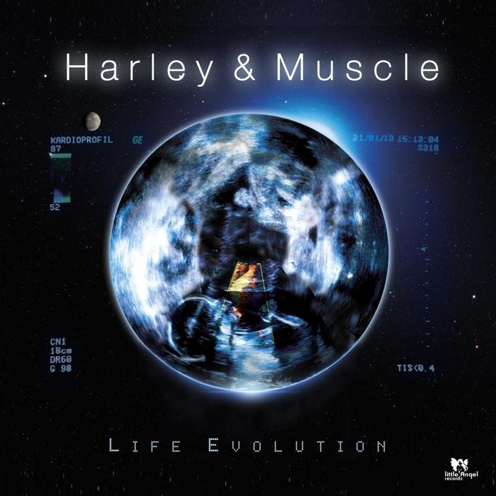 HARLEY & MUSCLE - Life Evolution