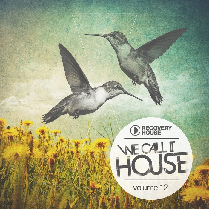 VARIOUS - We Call It House Vol 12