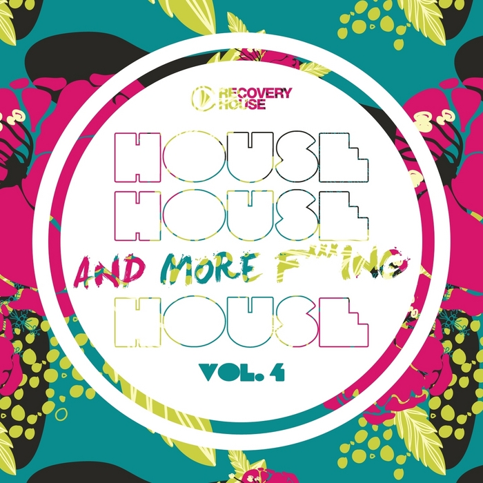 VARIOUS - House House & More F king House Vol 4