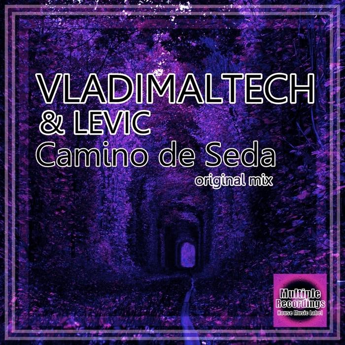 VLADIMALTECH - Camino De Seda