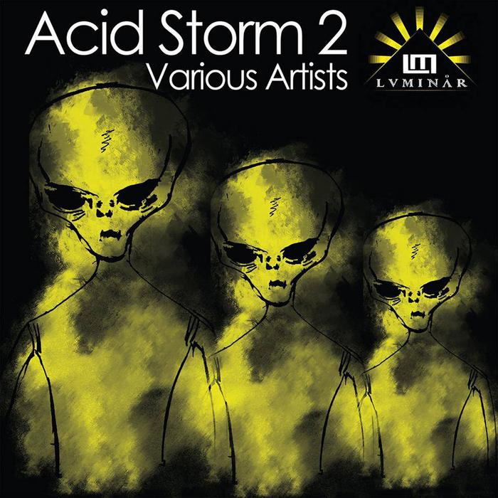 VARIOUS - Acid Storm Vol 2