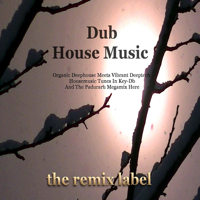PADURARU, Cristian/VARIOUS - Dub House Music (Organic Deephouse Meets Vibrant Deeptech Housemusic Tunes In Key-Db & The Paduraru Megamix Here)