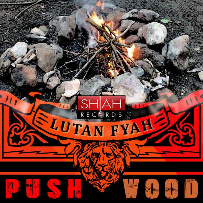 LUTAN FYAH - Push Wood
