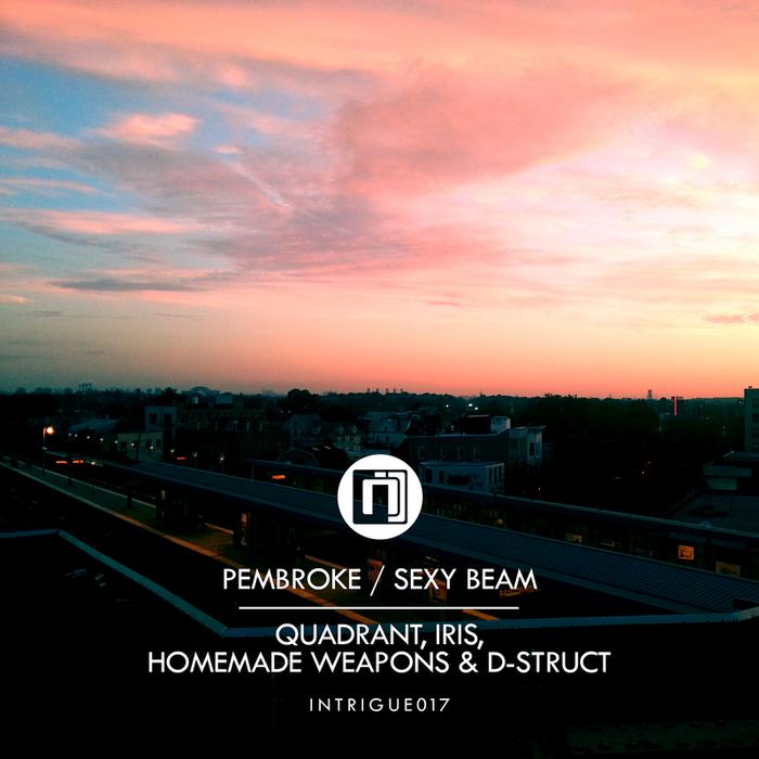 QUADRANT/IRIS & HOMEMADE WEAPONS/D-STRUCT - Pembroke