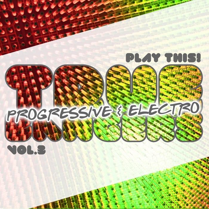 VARIOUS - True Progressive & House Bangers Vol 3