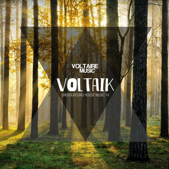 VARIOUS - Voltaik Vol 14