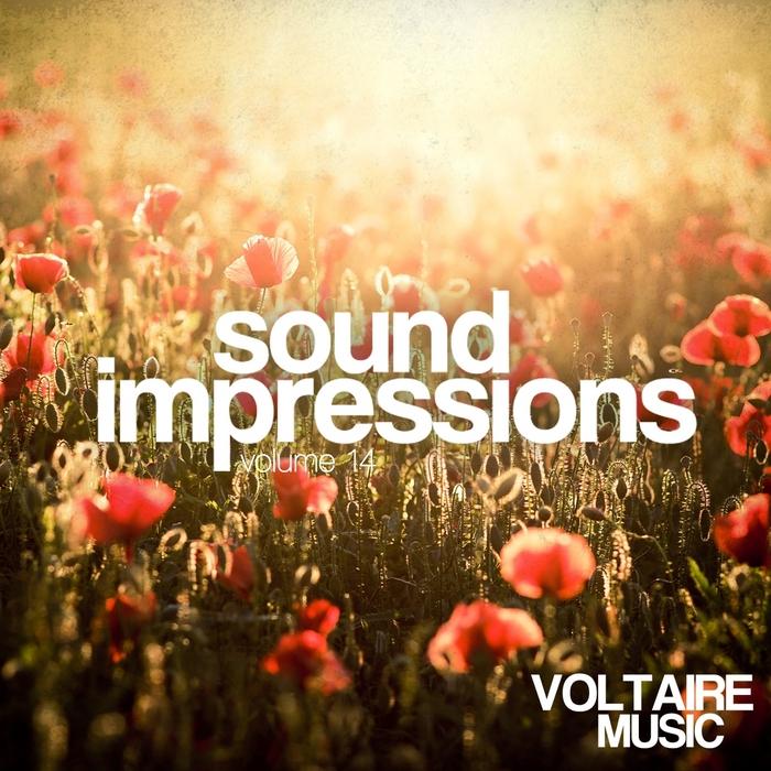 VARIOUS - Sound Impressions Vol 14