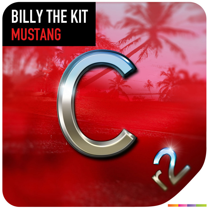 BILLY THE KIT - Mustang