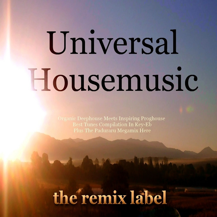 VARIOUS - Universal Housemusic (organic deephouse meets inspiring proghouse best tunes compilation in key-eb plus the paduraru megamix here)