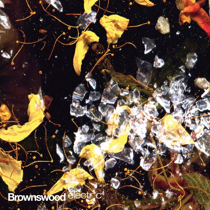 VARIOUS - Brownswood Electric 4