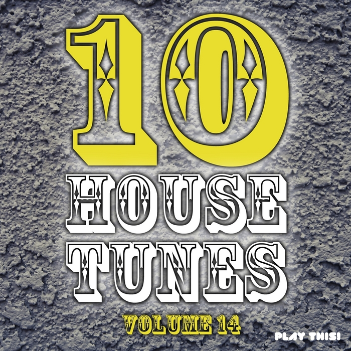 VARIOUS - 10 House Tunes Vol 14
