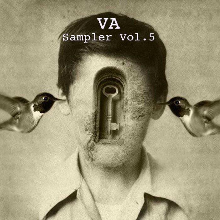 VARIOUS - Sampler Vol 5