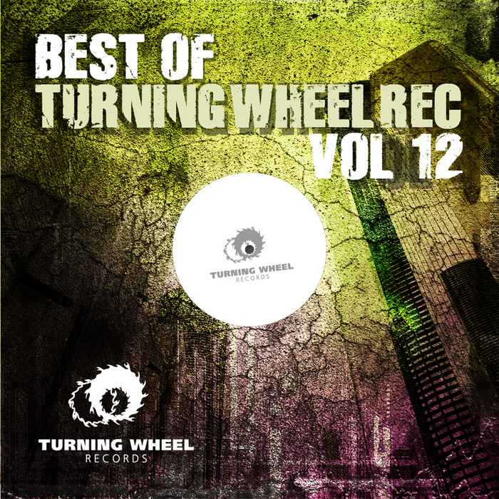 VARIOUS - Best Of Turning Wheel Rec Vol 12