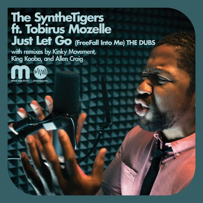 SYNTHETIGERS, The feat TOBIRUS MOZELLE - Just Let Go (Free Fall Into Me) - The Dubs