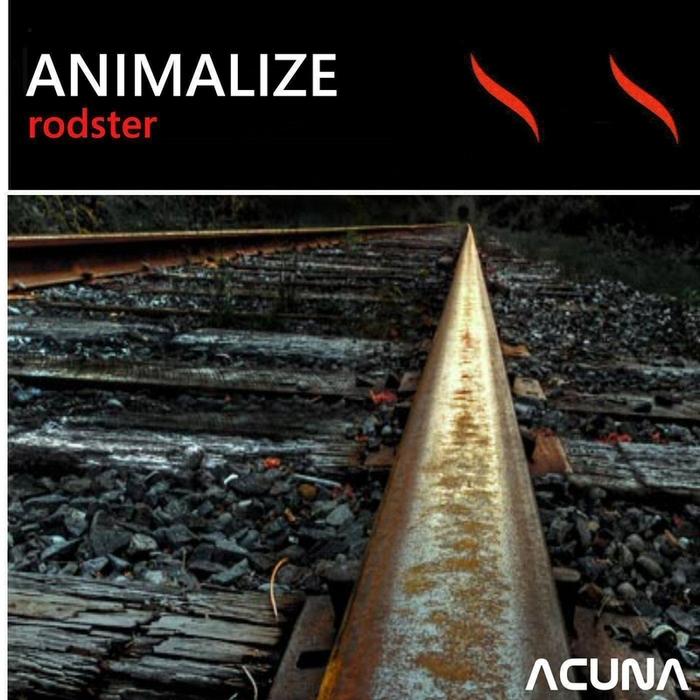 ANIMALIZE - Rodster