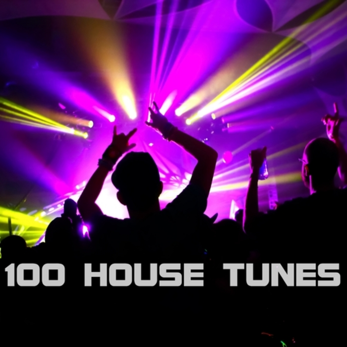 VARIOUS - 100 House Tunes