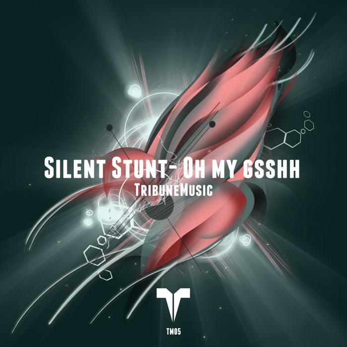 SILENT STUNT - Oh My Gsshh