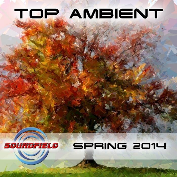 VARIOUS - Top Ambient Spring 2014