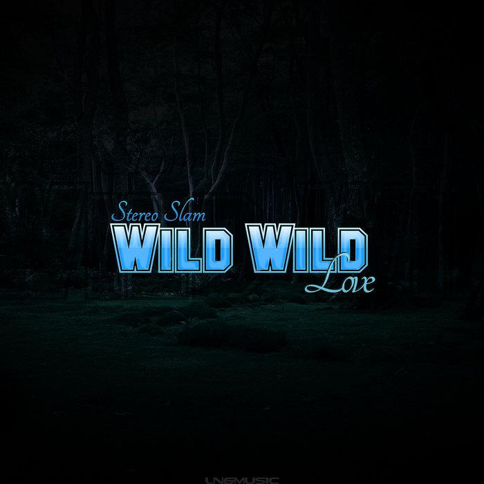 STEREO SLAM - Wild Wild Love