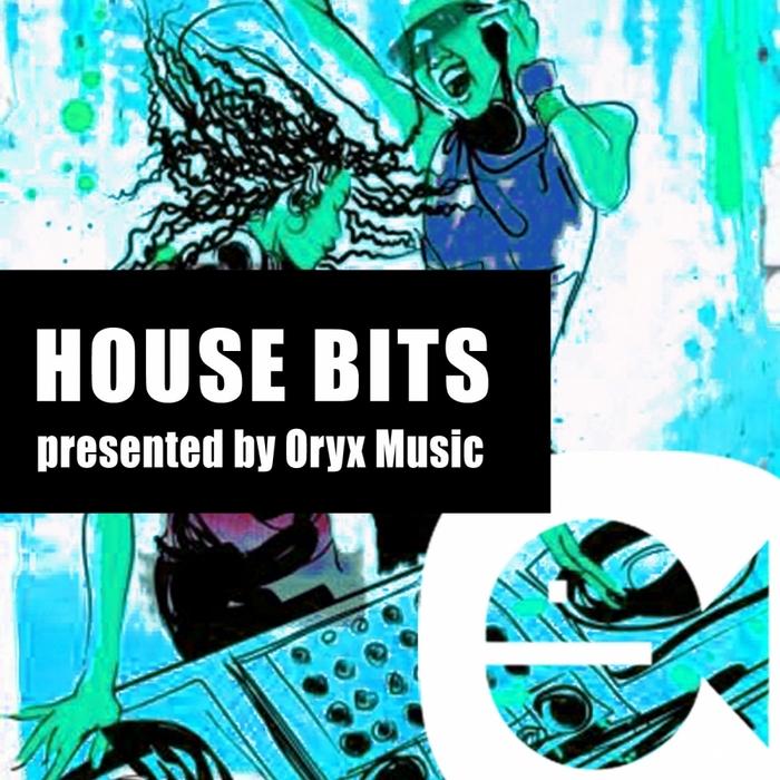 VARIOUS - House Bits Vol 14