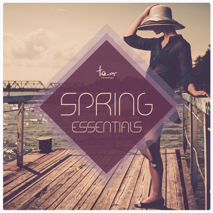 VARIOUS - Spring Essentials