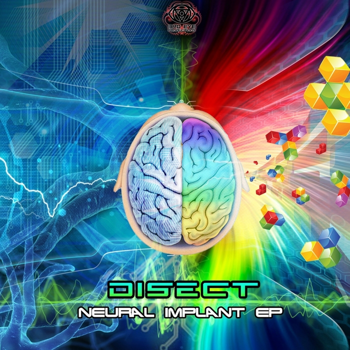 DISECT - Neural Implant