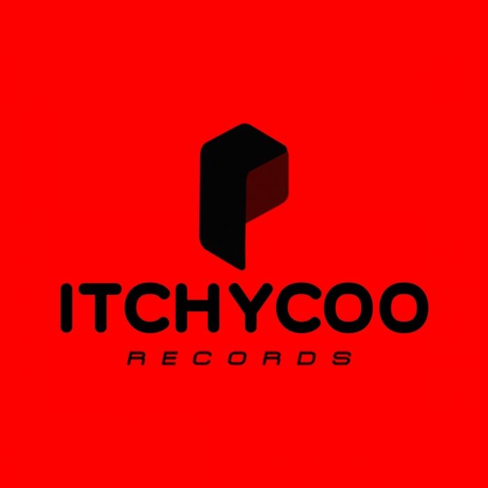 VARIOUS - Itchycoo Electro & Progressive House Vol  14