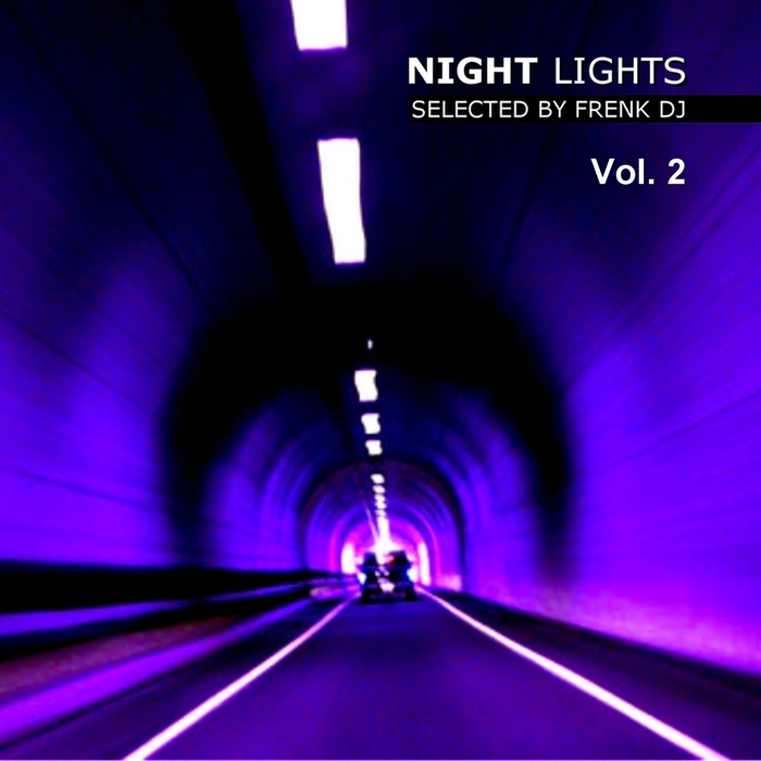 VARIOUS - Night Lights, Vol  2 (Selected By Frenk DJ)