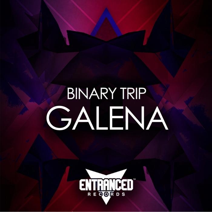 BINARY TRIP - Galena