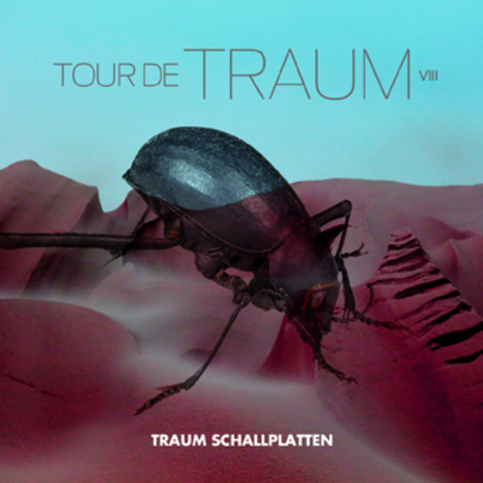 VARIOUS - Tour De Traum VIII Mixed By Riley Reinhold